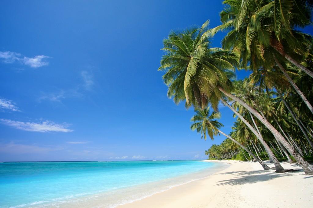 Bãi Dài Phú Quốc là 1 trong 10 bãi biển hoang sơ đẹp nhất hành tinh với cát vàng tự nhiên