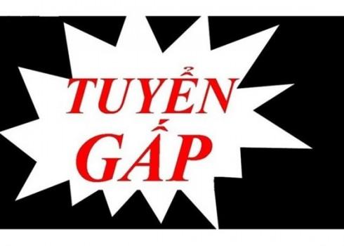 VIETHOUSING-TUYEN-GAP-CHIEN-BINH-SALES